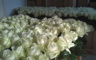 gerijpte open bloemen