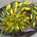 """Tulpen en """"Spring"""""""