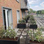 Opvul plantbak, kleine tuinen